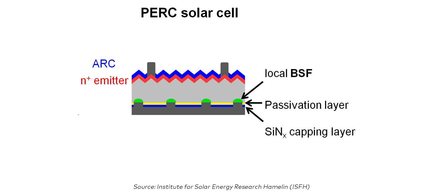 Perc Cell Explained